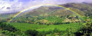 Mindful moment on rainbow in Ojai CA