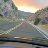 Surviving the Fires – Emotional Changes